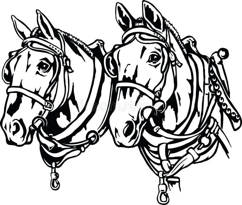 Ilustração dos cavalos de esboço ilustração do vetor