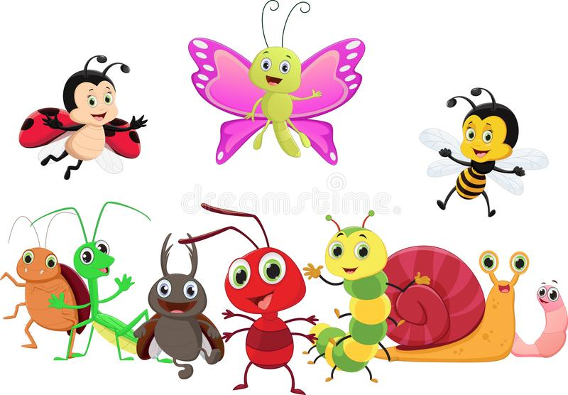 Ilustração dos desenhos animados felizes do inseto isolados no fundo branco ilustração do vetor