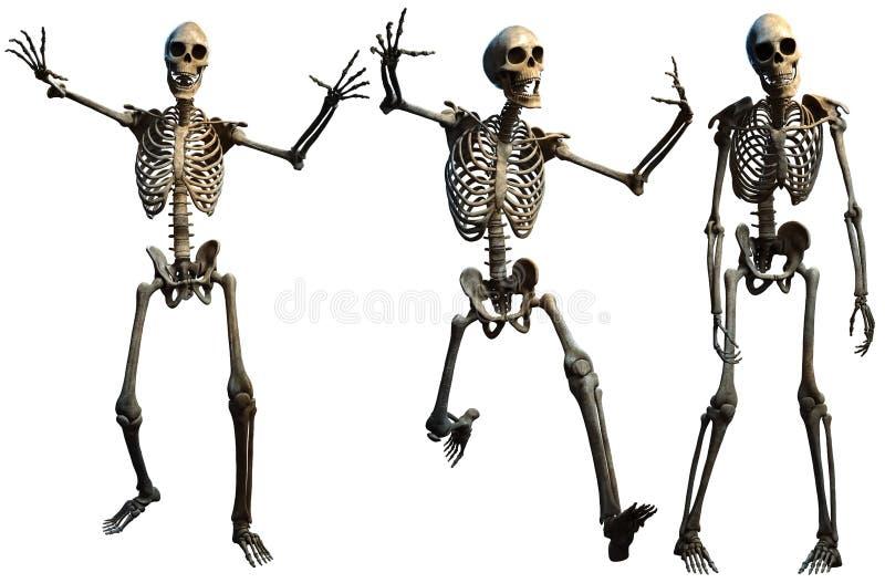 Ilustração dos esqueletos 3D ilustração royalty free