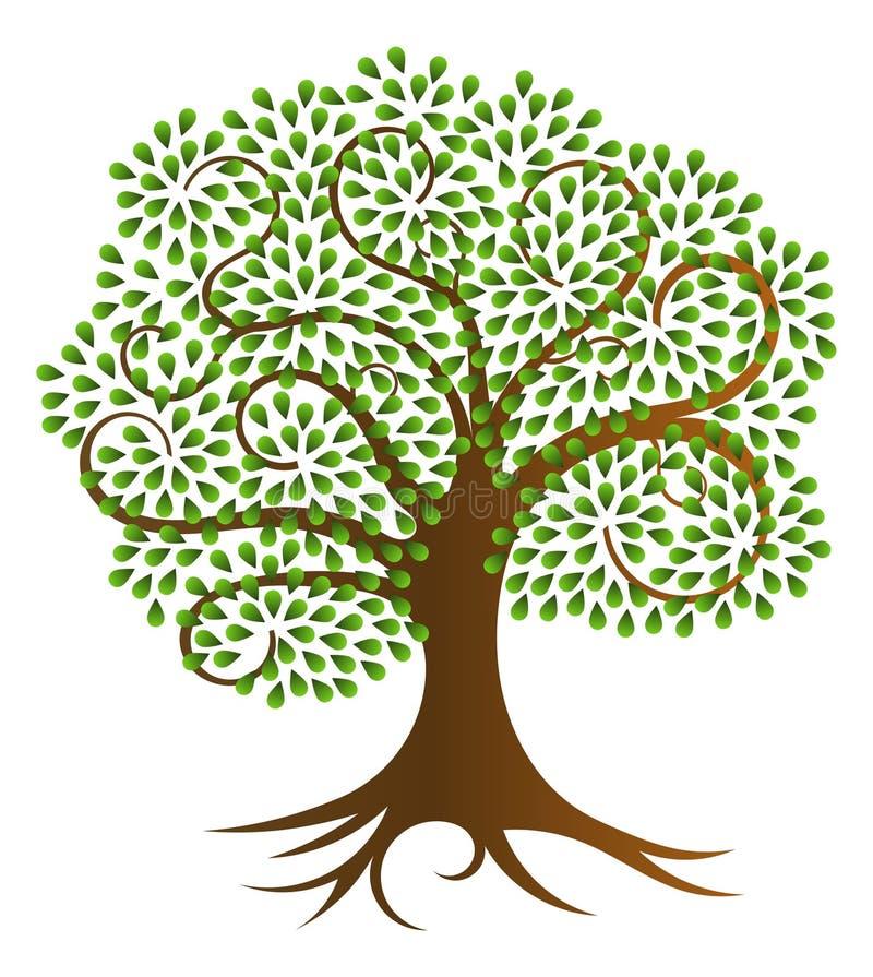Ilustração espiral do vetor da árvore ilustração royalty free