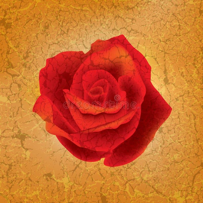 Ilustração floral abstrata ilustração do vetor