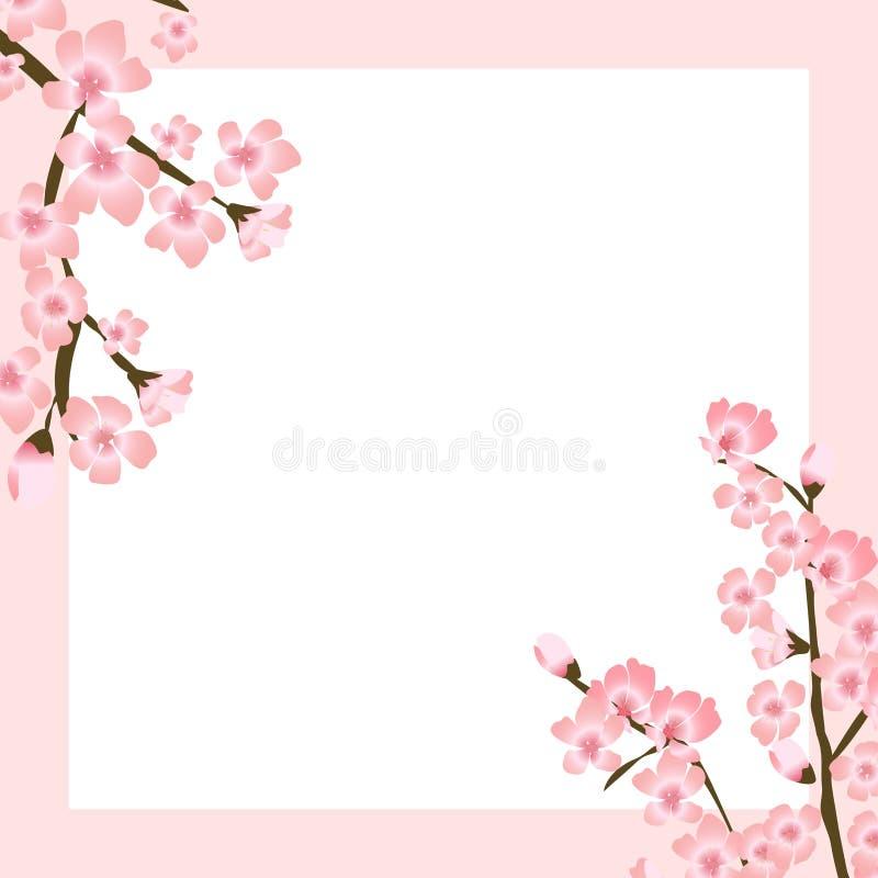 Ilustração floral abstrata do vetor de Sakura Flower Japanese Natural Background ilustração do vetor