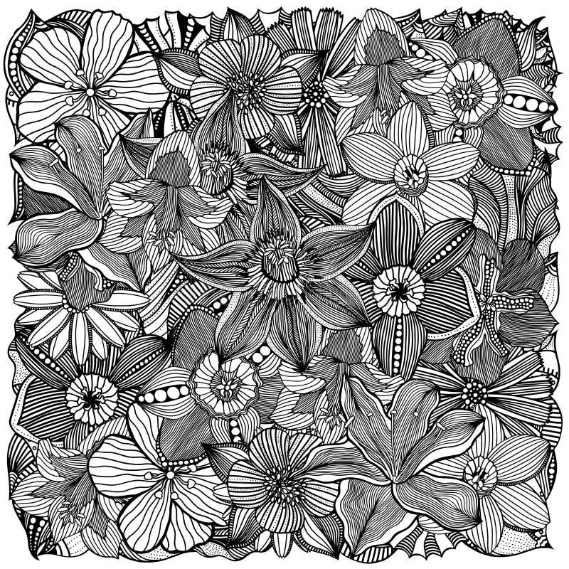 Ilustração floral do vetor do zentangle ilustração royalty free