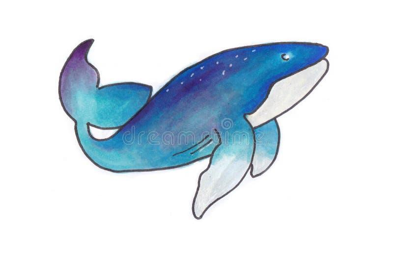 Ilustração Handdrawn de uma baleia imagens de stock royalty free