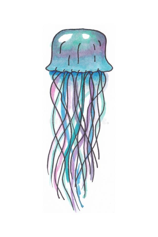 Ilustração Handdrawn de uma medusa colorida imagem de stock royalty free