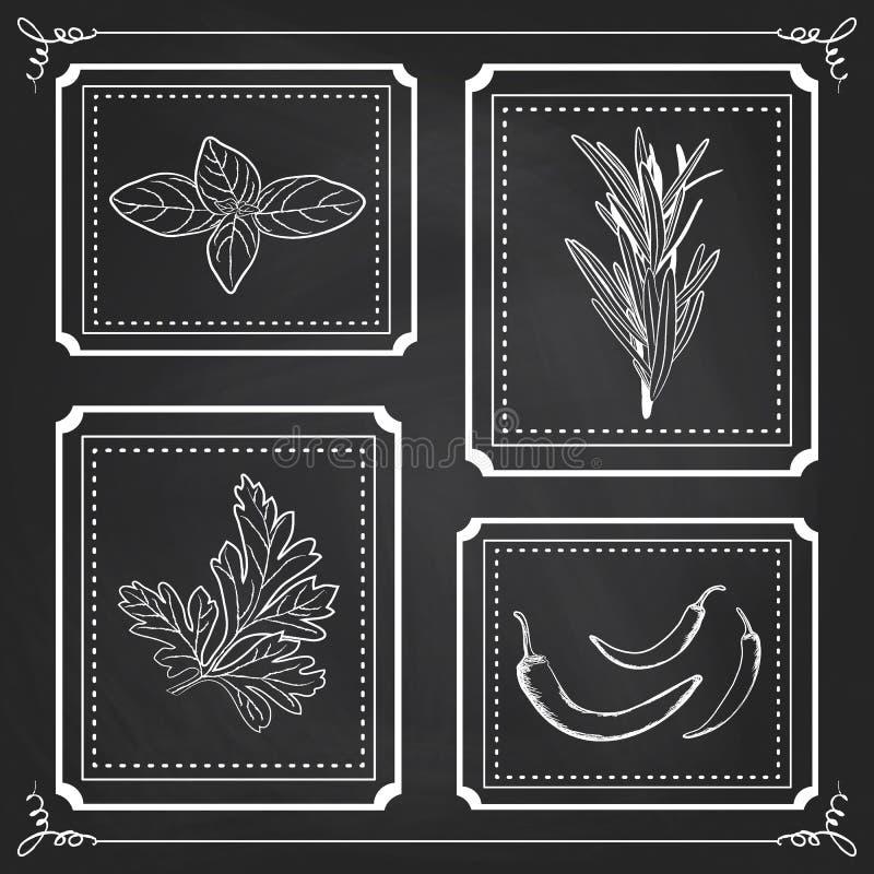 Ilustração Handdrawn - grupo da saúde e da natureza Coleção do ele ilustração royalty free