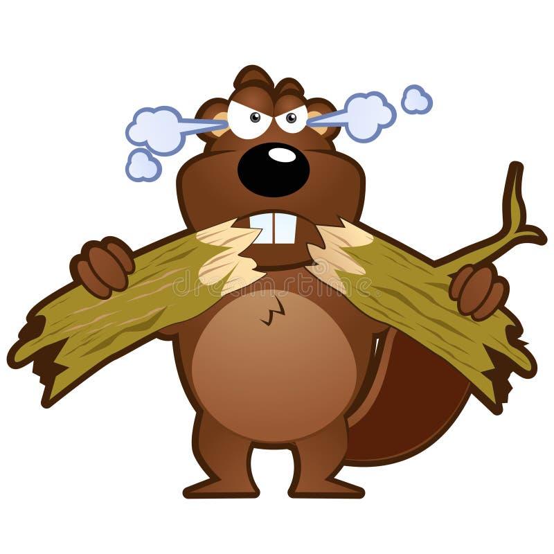 Ilustração irritada do caráter da mascote do castor dos desenhos animados ilustração royalty free