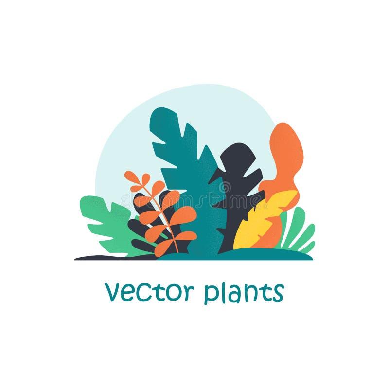 Ilustração isolada do vetor das plantas tropicais Folhas na moda da selva Fundo exótico no estilo liso ilustração royalty free