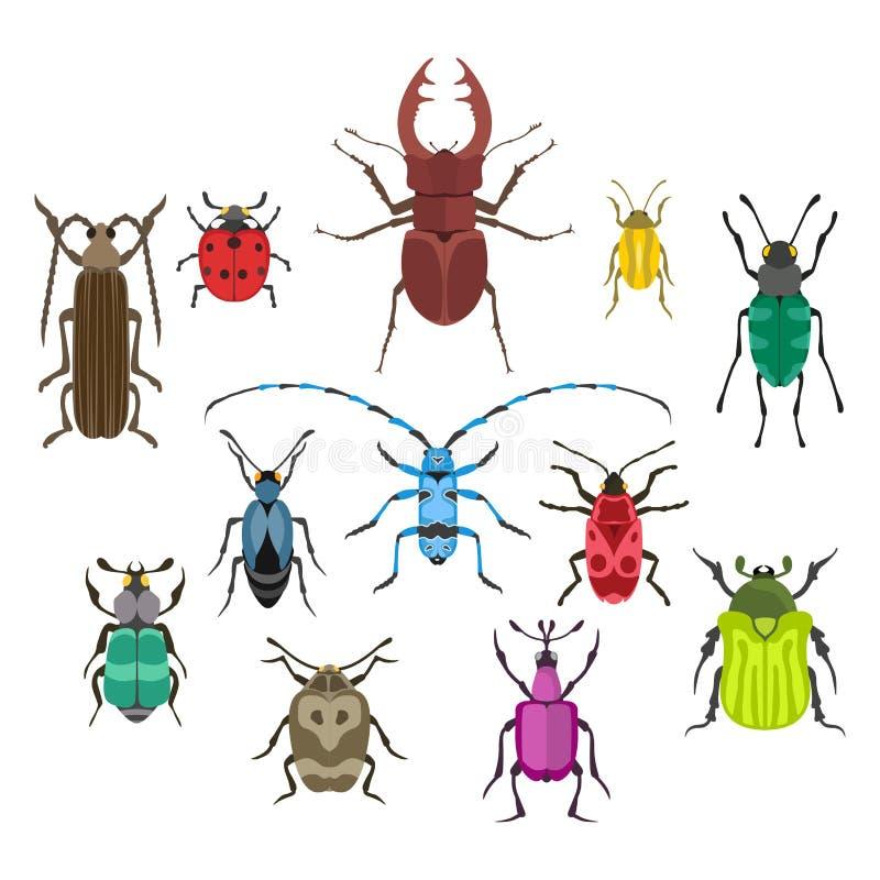 Ilustração isolada plano do vetor do ícone do inseto ilustração stock