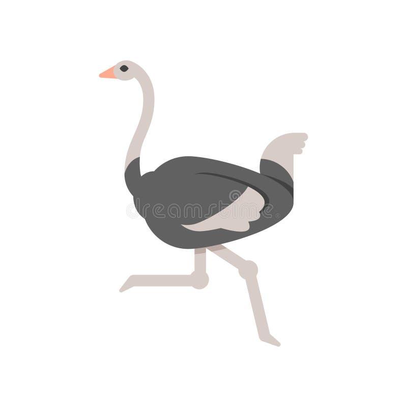 Ilustração lisa do estilo do vetor da avestruz ilustração do vetor