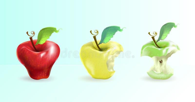 A ilustração mostra uma maçã em três formulários: inteiro, mordido, s imagem de stock