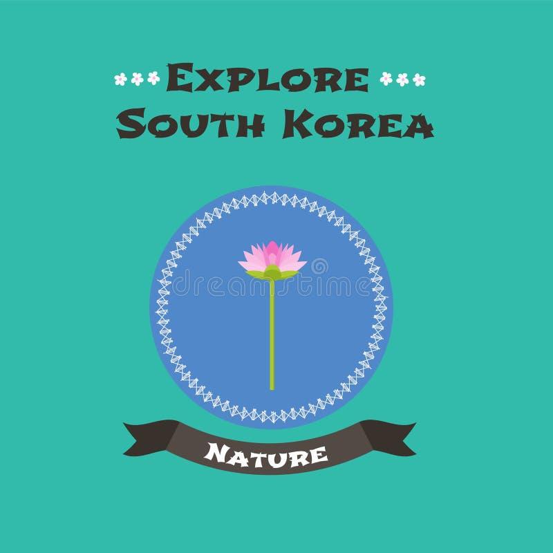 Ilustração nacional coreana do vetor dos lótus da flor ilustração do vetor