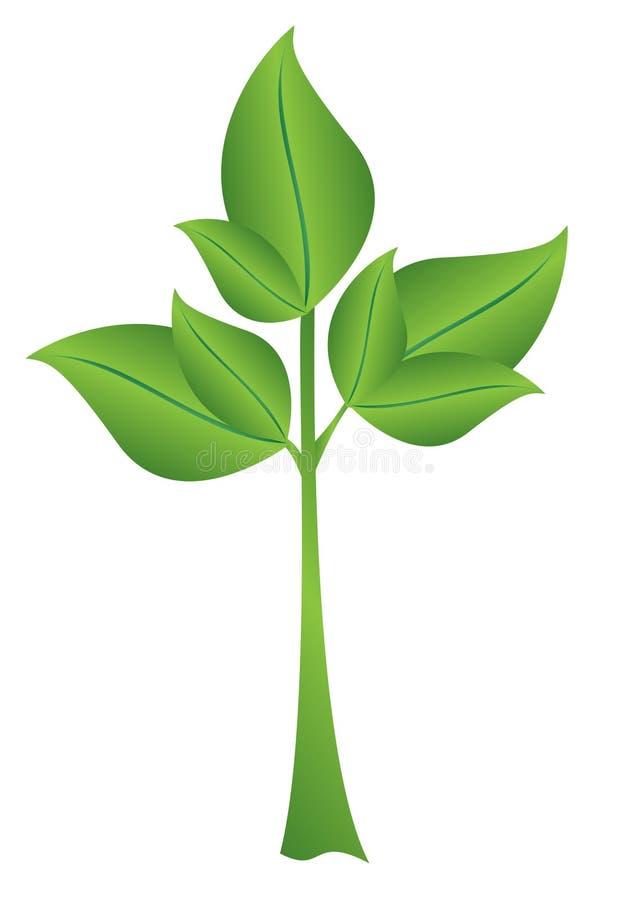 Ilustração - planta verde pequena ilustração royalty free