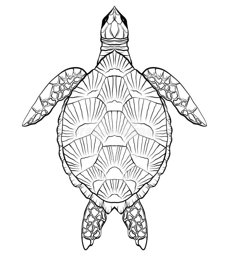 Ilustração preto e branco do contorno da tartaruga O objeto é separado do fundo ilustração stock