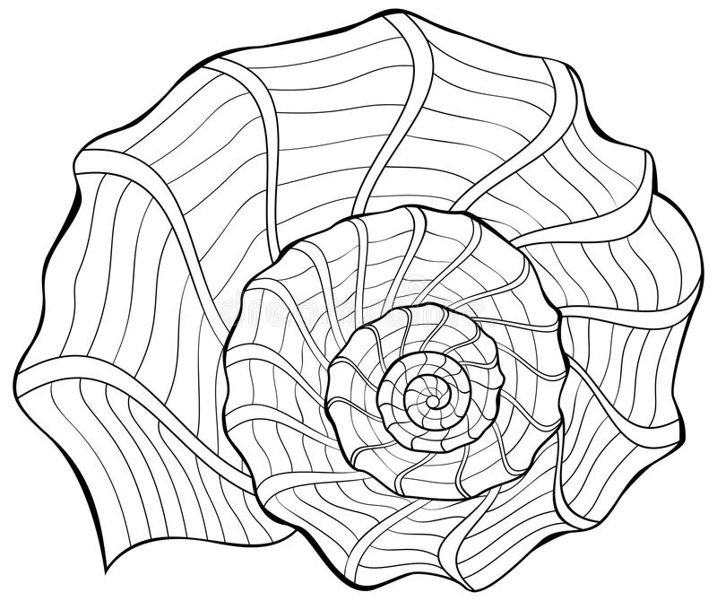 Ilustração preto e branco do shell para colorir ilustração stock