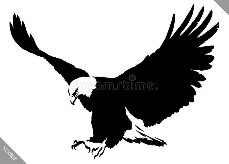 Ilustração preto e branco do vetor do pássaro da águia da tração da pintura fotografia de stock