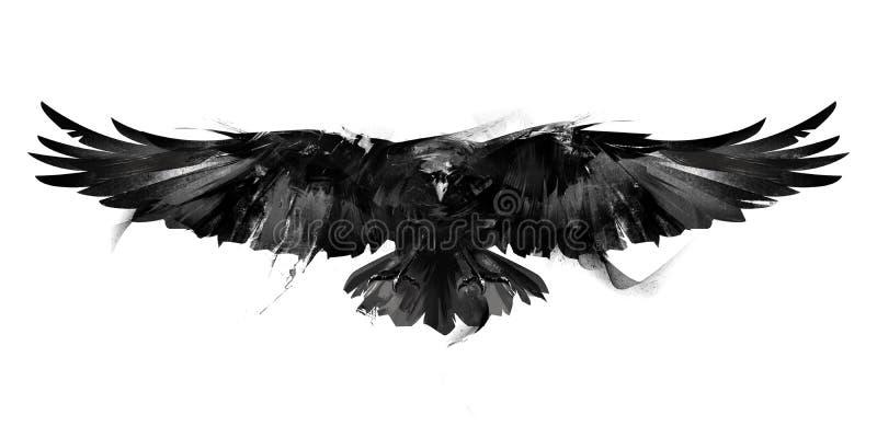 Ilustração preto e branco isolada de uma parte dianteira do corvo do pássaro de voo ilustração royalty free