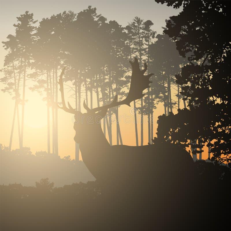 Ilustração realística da paisagem com o céu conífero da floresta e da manhã com luz solar Cervos com os chifres que estão e que o ilustração do vetor