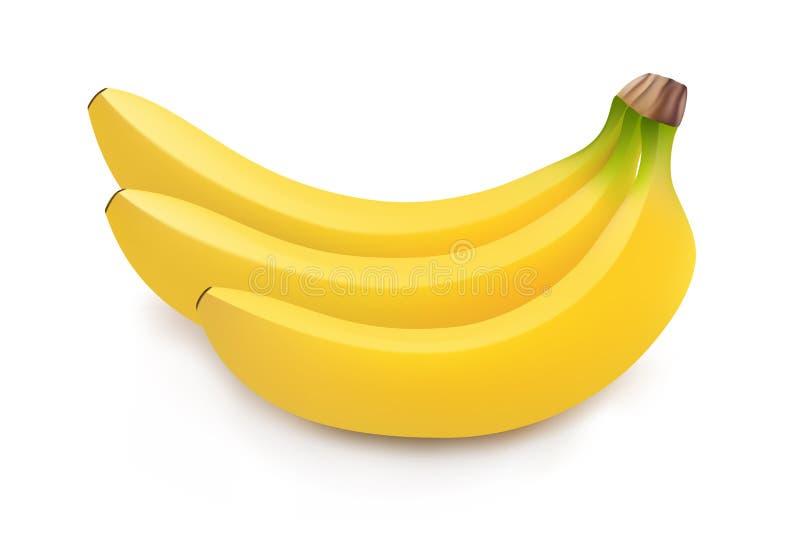 Ilustração realística do grupo das bananas ilustração do vetor
