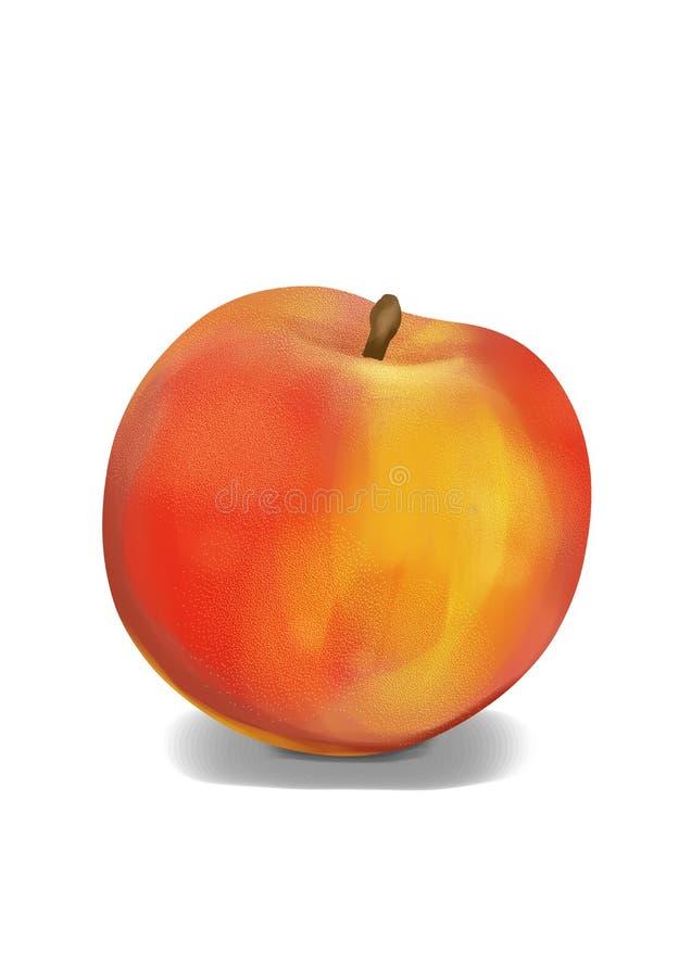 Ilustração realística, lisa do pêssego, parte dianteira de um fruto ilustração stock