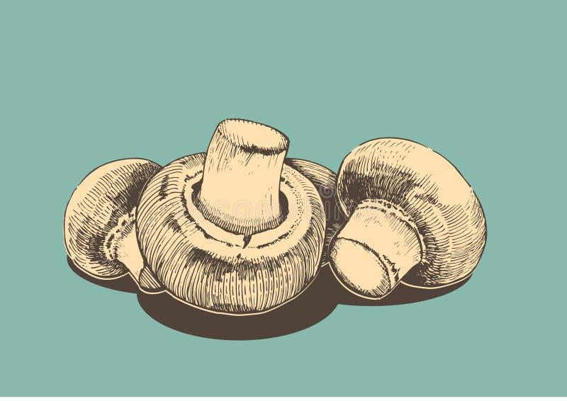 Ilustração retro de Hampions ilustração do vetor