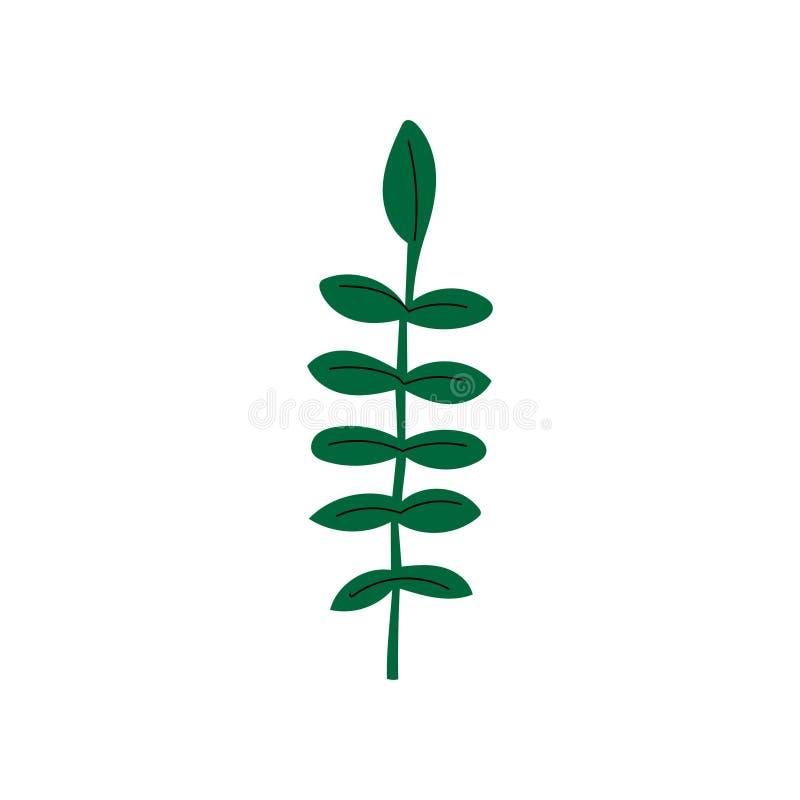 Ilustração selvagem do vetor de Herb Summer Landscape Design Element ilustração stock