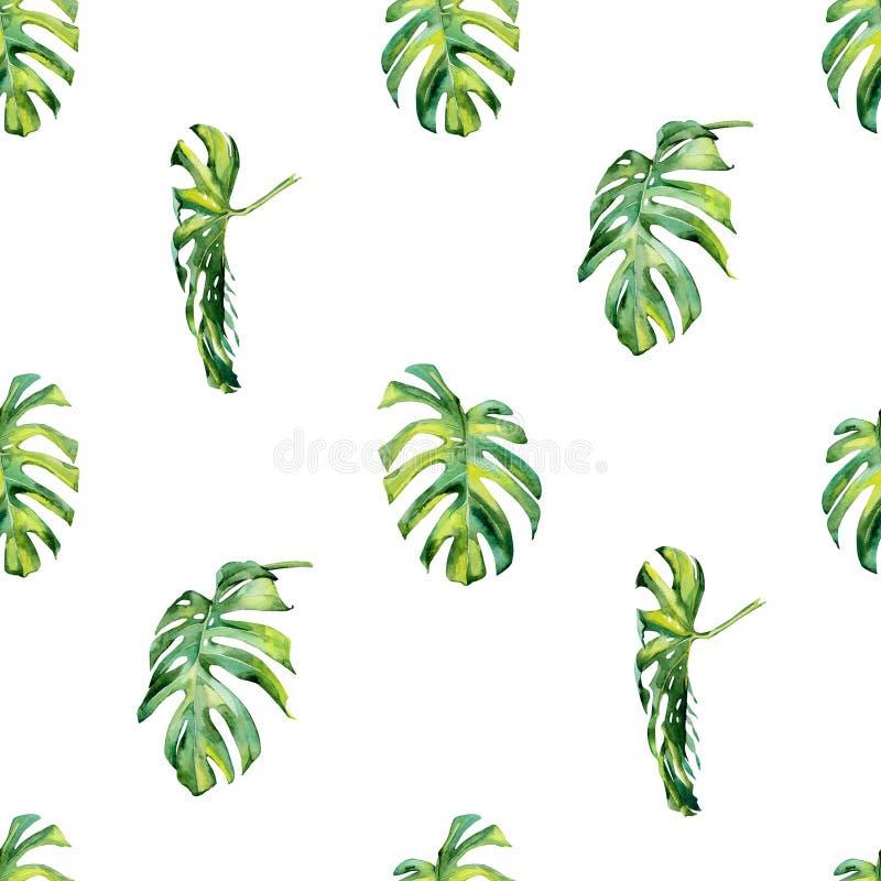 Ilustração sem emenda das folhas tropicais, selva densa da aquarela ilustração stock
