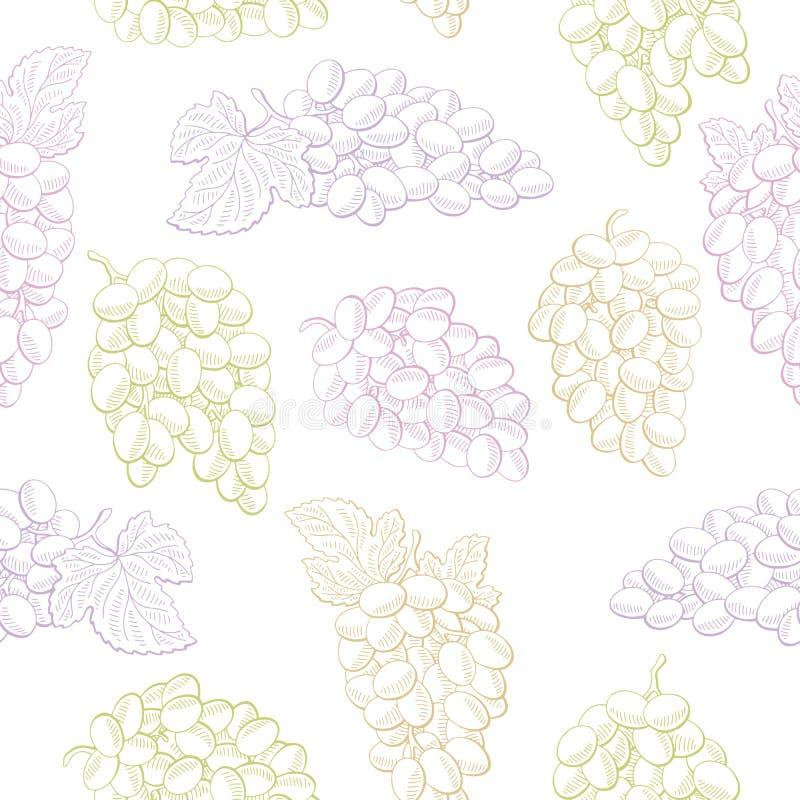 Ilustração sem emenda do fundo do esboço do teste padrão da cor gráfica do fruto das uvas ilustração do vetor