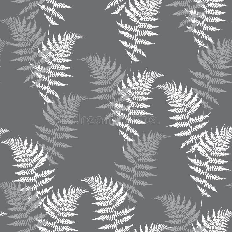 Ilustração sem emenda do vetor do teste padrão da samambaia realística Vetor detalhado da samambaia da samambaia, floresta tropic ilustração royalty free