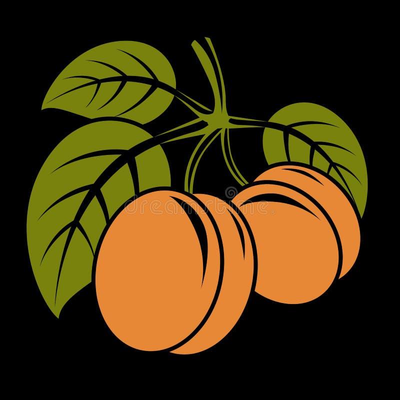 A ilustração simples do alimento biológico do vegetariano, dois vector o swe maduro ilustração royalty free