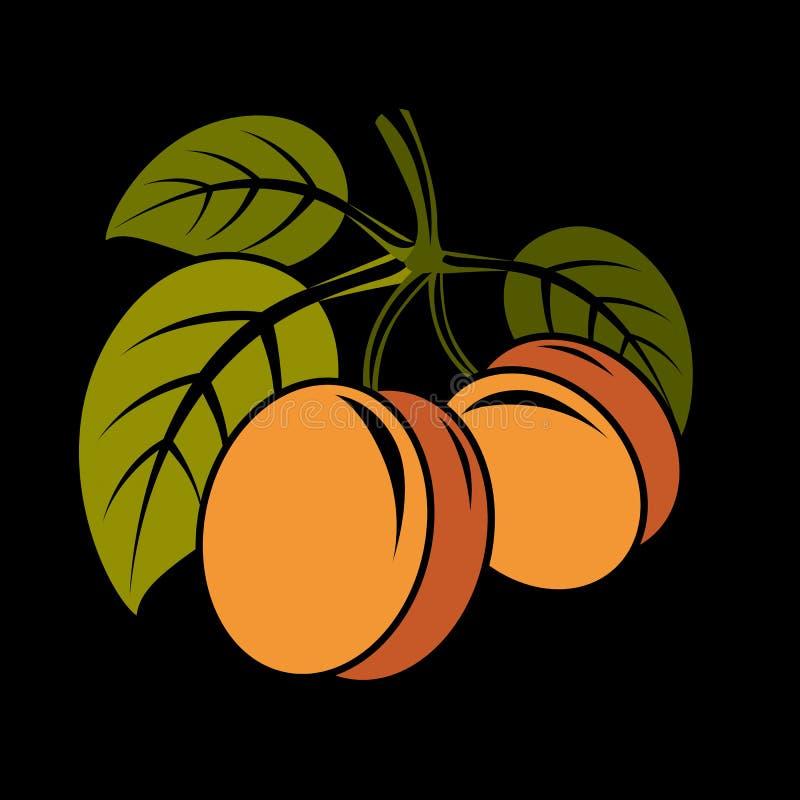 A ilustração simples do alimento biológico do vegetariano, dois vector o swe maduro ilustração do vetor