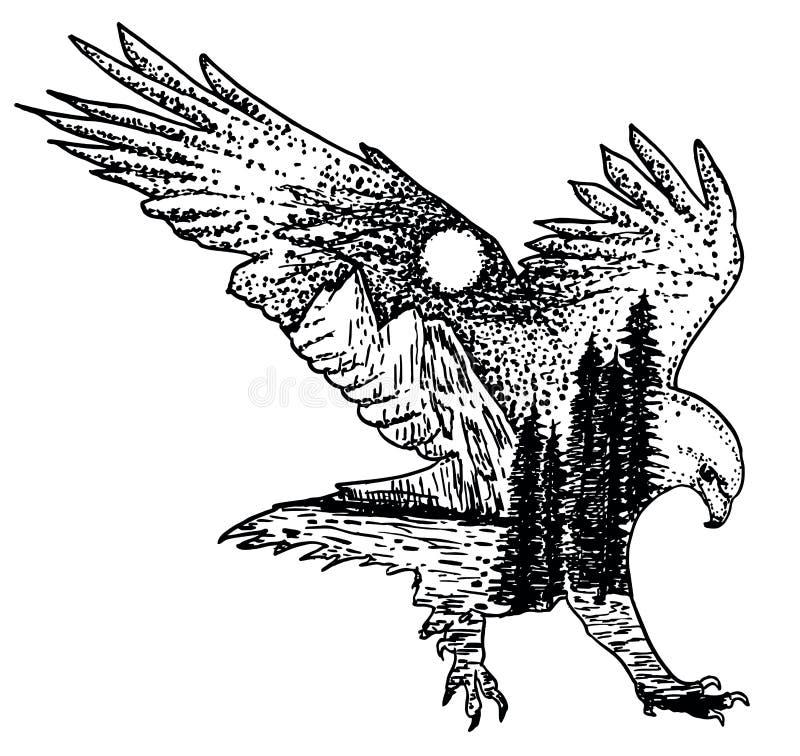 Ilustração tirada da tinta do vetor da águia mão decorativa estilizado ilustração stock