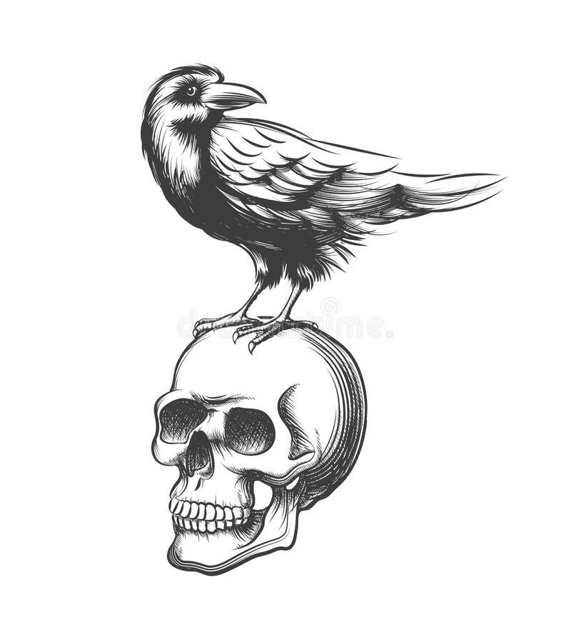 Ilustração tirada do vetor do corvo mão má Diabo preto do corvo no fundo do branco do crânio ilustração do vetor