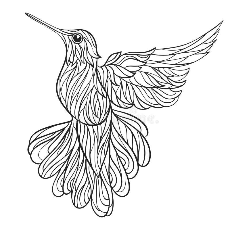 Ilustração tirada do vetor mão monocromática do colibri ilustração stock