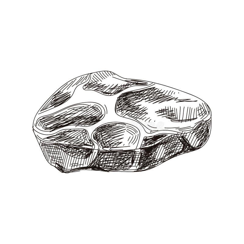 Ilustração tirada dos produtos de carne do vetor mão bonita ilustração stock