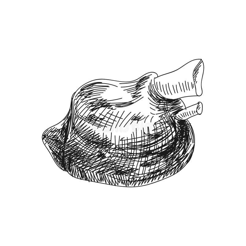 Ilustração tirada dos produtos de carne do vetor mão bonita ilustração do vetor