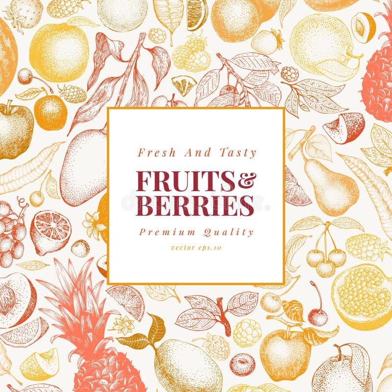 Ilustração tirada mão do vetor dos frutos e das bagas Projeto gravado retro do estilo Pode ser o uso para o menu, etiqueta, empac ilustração royalty free