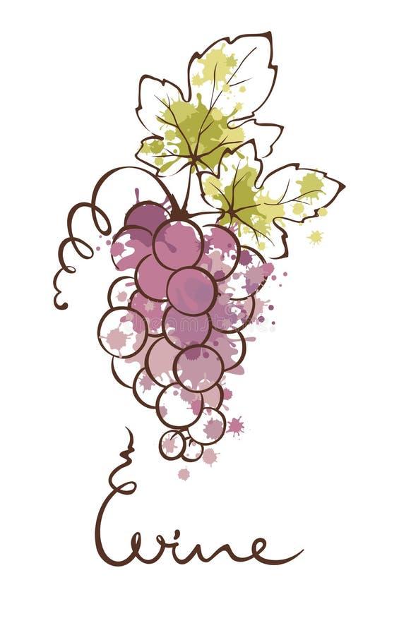 Ilustração - uvas Aquarela do respingo ilustração do vetor