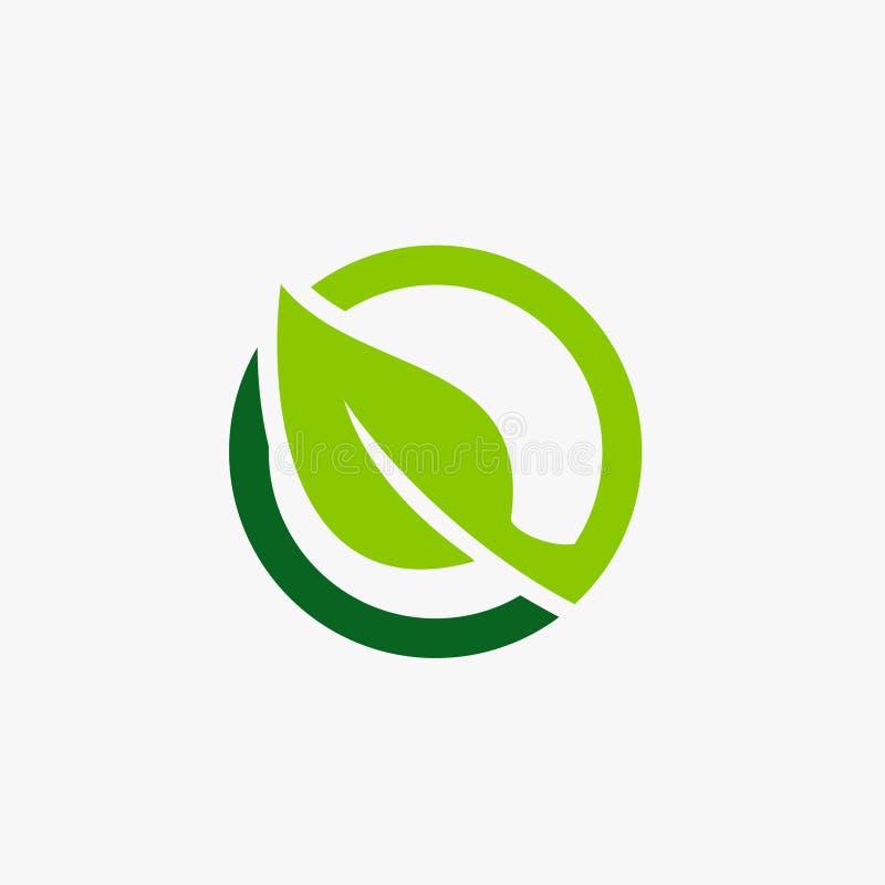 Ilustração verde do ícone do círculo da folha imagem de stock royalty free