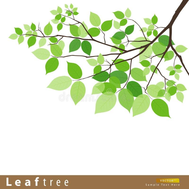 Ilustração verde do vetor da árvore da folha ilustração royalty free