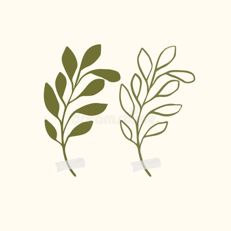 Ilustrações botânicas do vetor Clipart bot?nico Ajuste dos ramos verdes Elementos florais de Herb Design ilustração royalty free