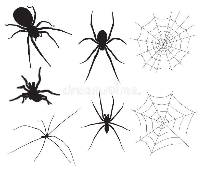 Ilustrações da aranha do vetor ilustração stock