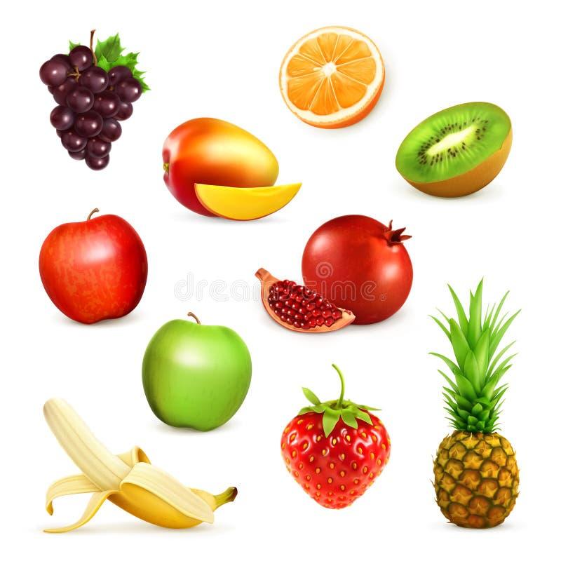 Ilustrações do vetor dos frutos imagens de stock