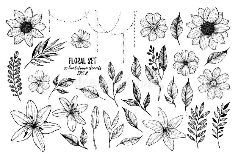 Ilustrações do vetor - flores florais, folhas e ramos do grupo ilustração stock