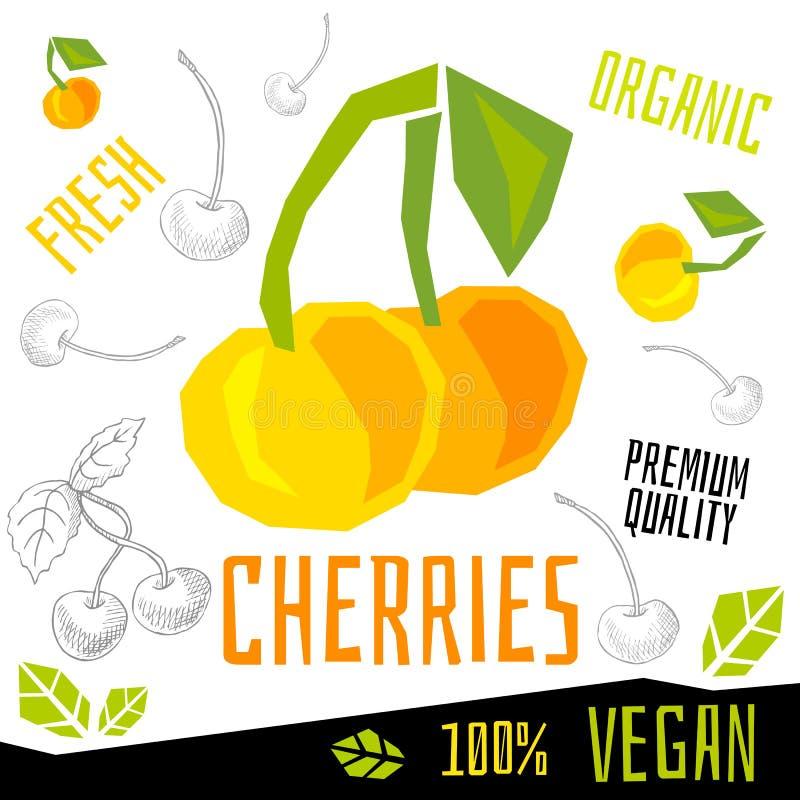 Ilustrações tiradas do vetor do alimento do vegetariano dos frutos de bagas da baga da cereja das cerejas mão orgânica fresca ilustração do vetor