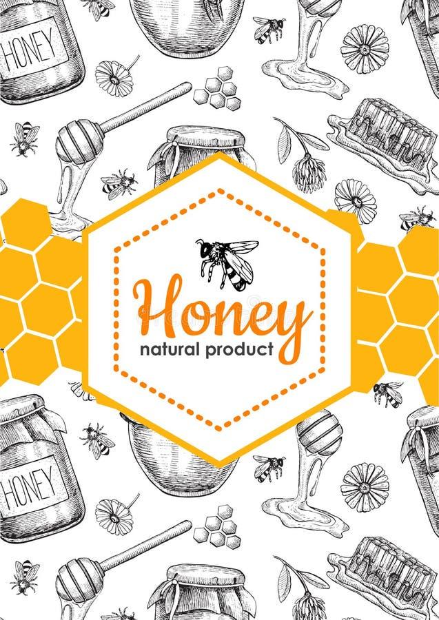 Ilustrações tiradas mão da abelha do mel do vetor Bandeira do mel, cartaz