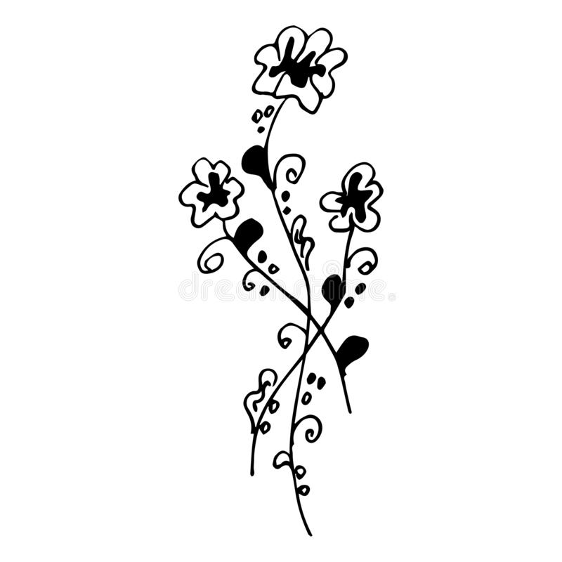 Ilustrações tiradas mão gravadas da flor abstrata isoladas no branco Flor tirada mão do vetor ilustração do vetor