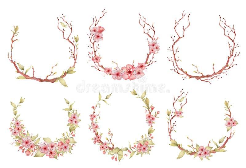 Ilustra??o da aquarela das flores de Sakura Grinalda da pétala da flor ilustração stock