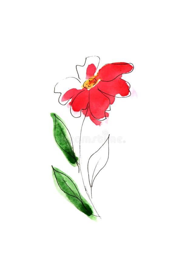 Ilustra??o de flores da aquarela ilustração royalty free