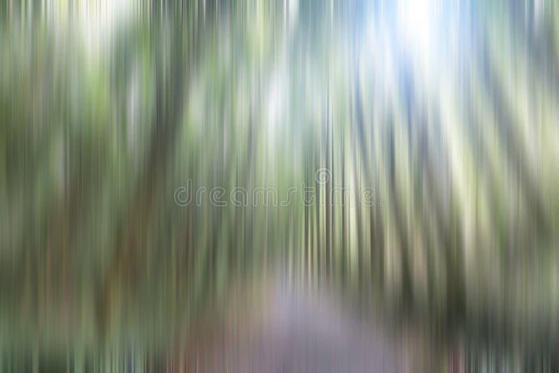 Ilustra??o do fundo natural Imagem obscura das árvores e das luzes em cores verdes, marrons e brancas do movimento Linha vertical fotos de stock
